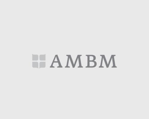 Rapport annuel 2018-2019 du Groupe AMBM